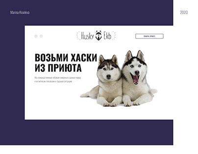 Landing Page для приюта собак