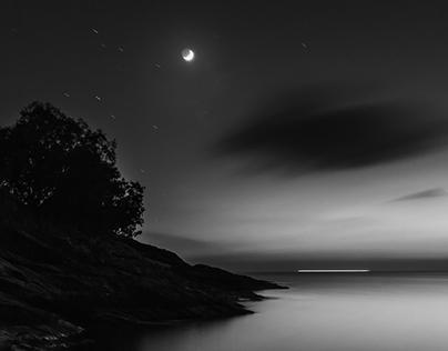 Kea under moonlight