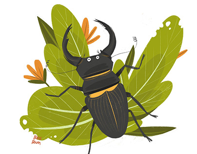 Woodland bugs