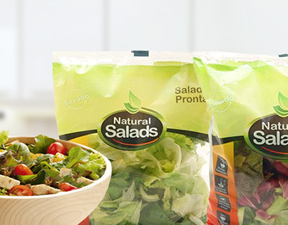 NaturalSalads - concept for website