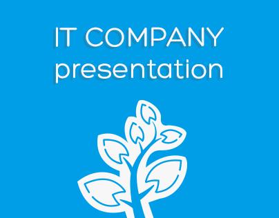 IT Company Presentation