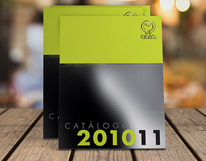 Diseño de Catálogo Anual.