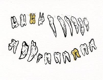 Pirate Cavities