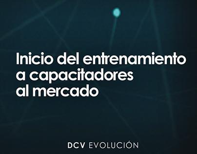 Ciberseguridad DCV