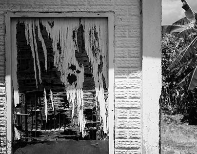 Life in Black & White
