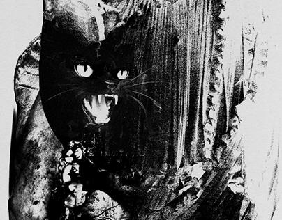 Black Cat. // 2015