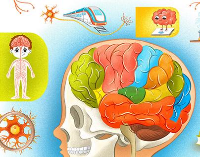 Children's book about health, anatomy & good habits