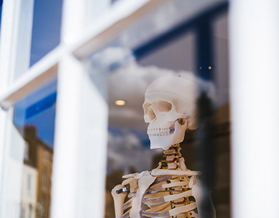 The Importance of Healthy Bones