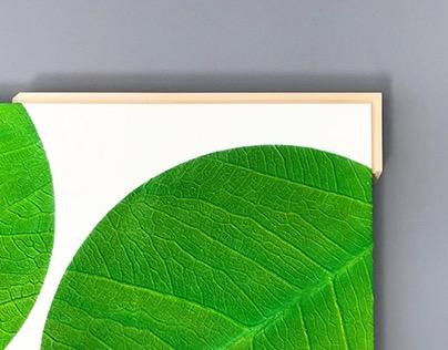 Leaf & Balance