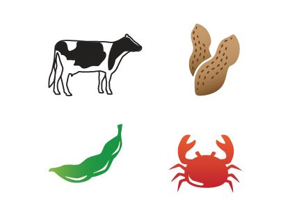 Icon Design   Illustration