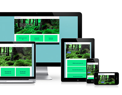 WILLY STASSEYNS: WORDPRESS RESPONSIVE WEBSITE DESIGN