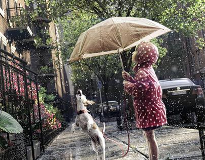 Summer rain in the city