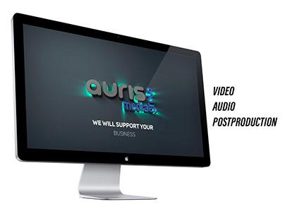 AURIS Business Video Presentation