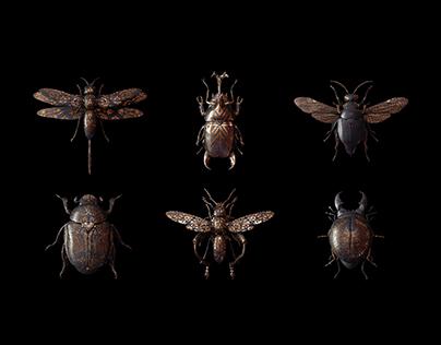 Engraved Entomology