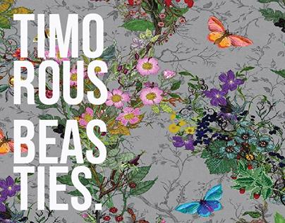 iPad Interactive Magazine - Timorous Beasties