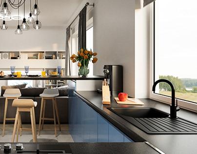Kitchen-guestroom