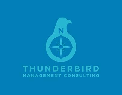 Thunderbird Management Consulting