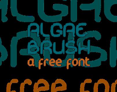 KD Algae Brush | Free font