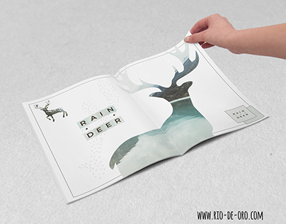 Reindeers hand drawn images composing in a book