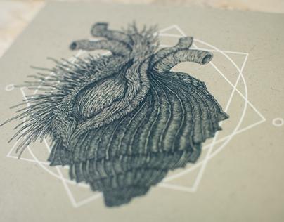 """Alchimia """"Aurora"""" album artwork"""