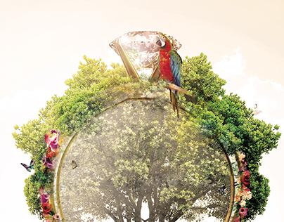 Honduras - Aniversario