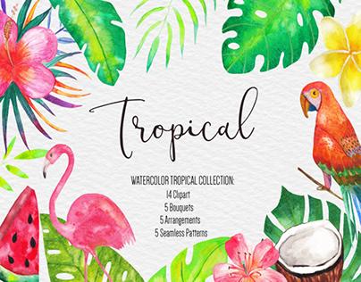 Watercolor Tropical Illustration
