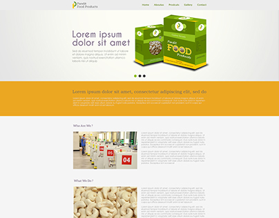 Pandit Food Website Design Option