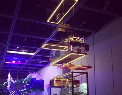 Microwave International Media Arts Festival 2014 -