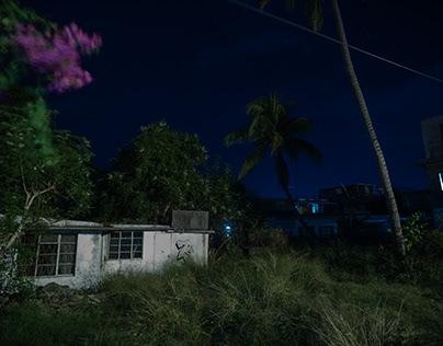 Sleepwalking in Tamarin