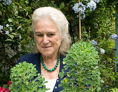 Penny Snell's Garden