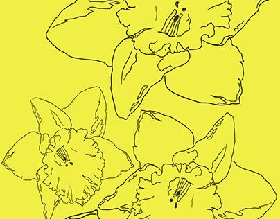 A Flower a day