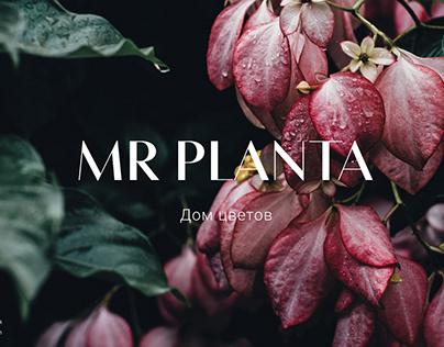 Веб-сайт для салона цветов Mr Planta