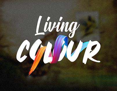 Mosts living colour - Craft pencils