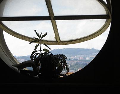 tudo é uma janela
