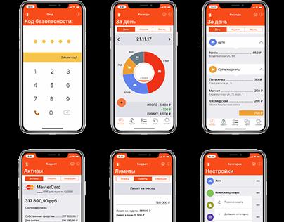 HOME BUDGET iOS Application