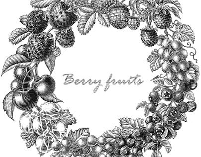 Berry circle