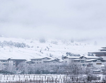 Lulang,Tibet 西藏鲁朗