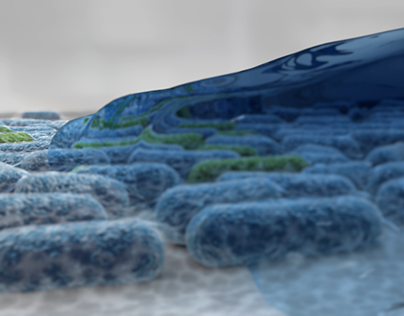 Bacterial Animation