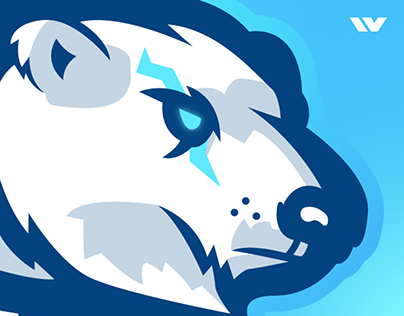 WarningTeam Mascot Logo | Case Study
