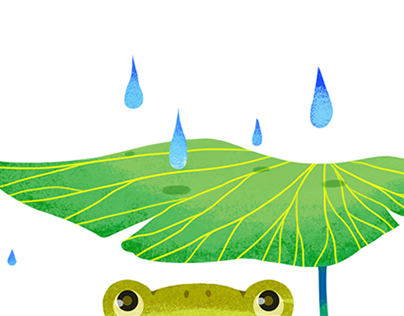 Toad in the Rain