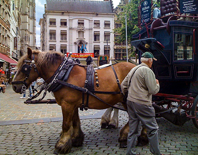 Antwerpen closeup (Belgium)