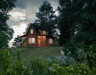 House in the wood_02