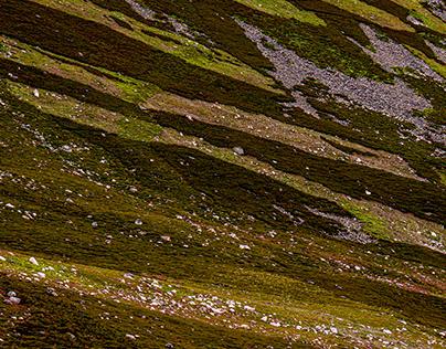 Cairngorms, A Scottish Journey