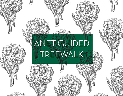 Guided Treewalk, Andaman and Nicobar Islands