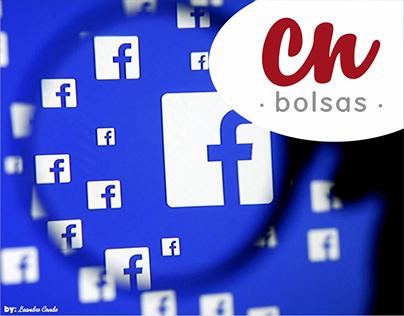 Criação de Pagina de Facebook, Publicação!