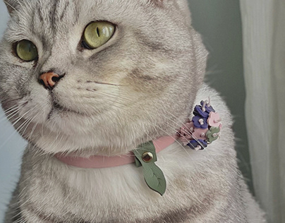 Product design- Pet collar- Fluffy Flora collection