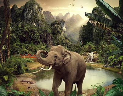 Zoo de LA / Agencia RLR Los Ángeles