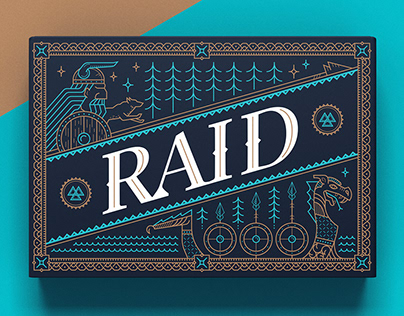 Raid Game packaging