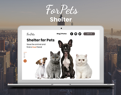 Website | Shelter for pets