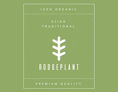 Tea Concept - Packaging Design